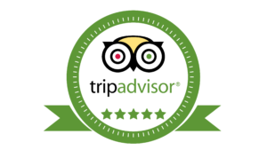 5 Star TripAdvisor Reviews